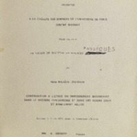 Nada Milasin disertacija.pdf